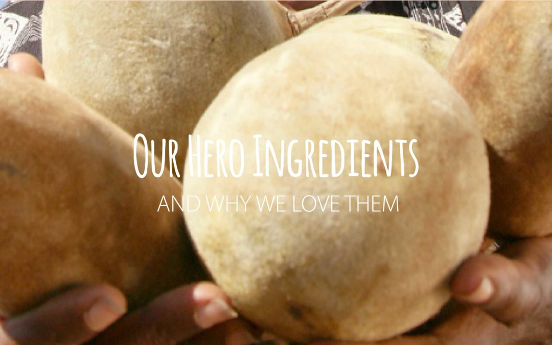 Our hero ingredient – Baobab